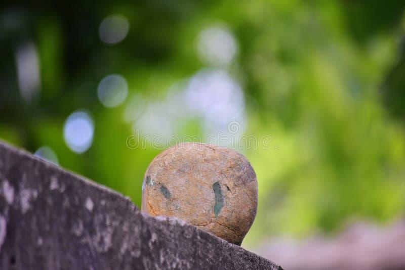 Äkta jade är ett naturligt klumpa sig Det inte har ännu klippts royaltyfri bild