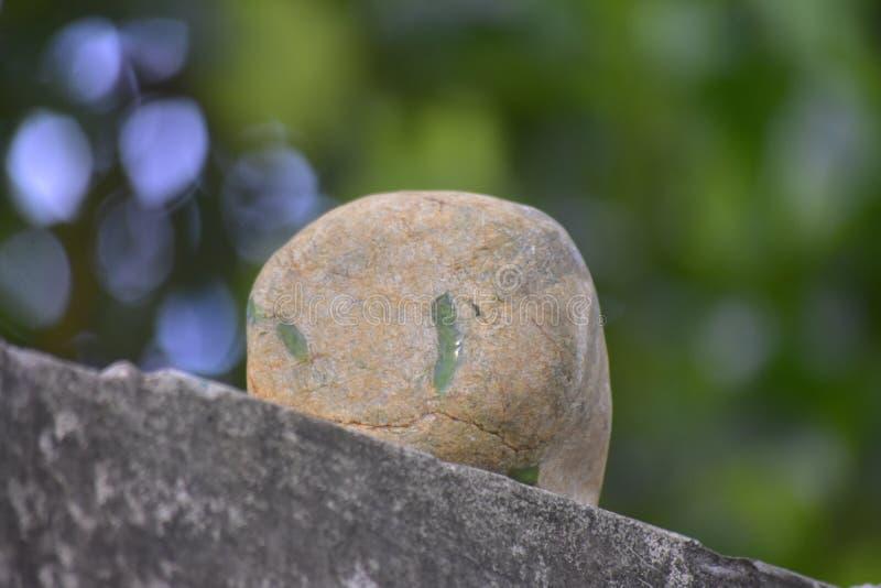 Äkta jade är ett naturligt klumpa sig Det inte har ännu klippts fotografering för bildbyråer