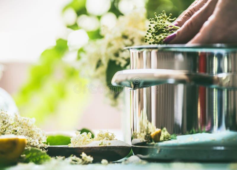 Äldre blommasirap- eller driftstoppmatlagning Slut upp av den kvinnliga handen med Elderflowers och krukan på köksbordet royaltyfri bild