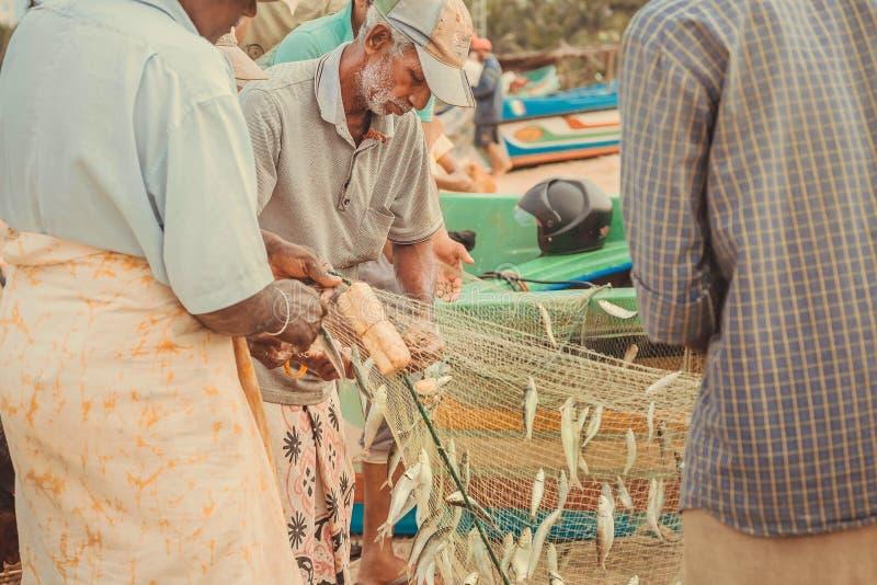 Äldre fiskare lastar av fisken, når de har fiskat i Indiska oceanen royaltyfri foto