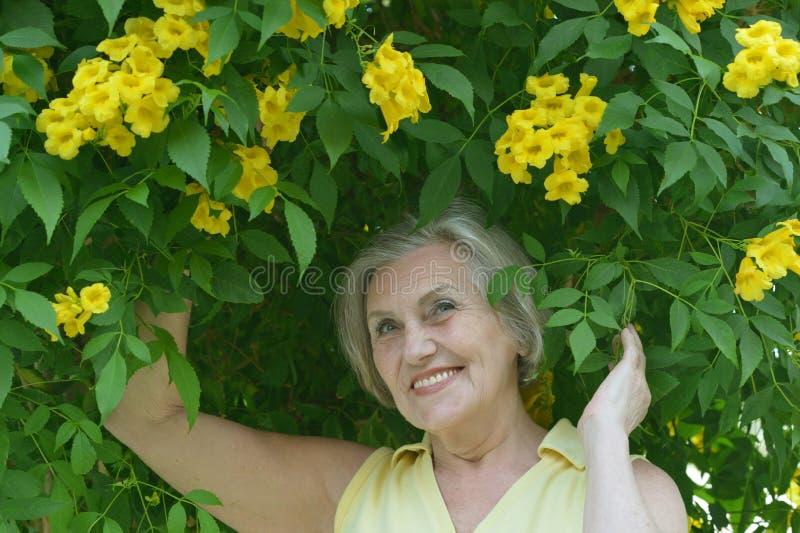 Äldre kvinna med blommor arkivfoto