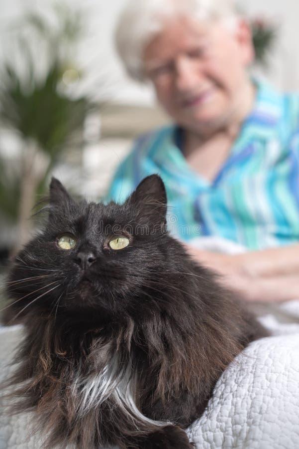 Äldre kvinna med hennes husdjur arkivfoton