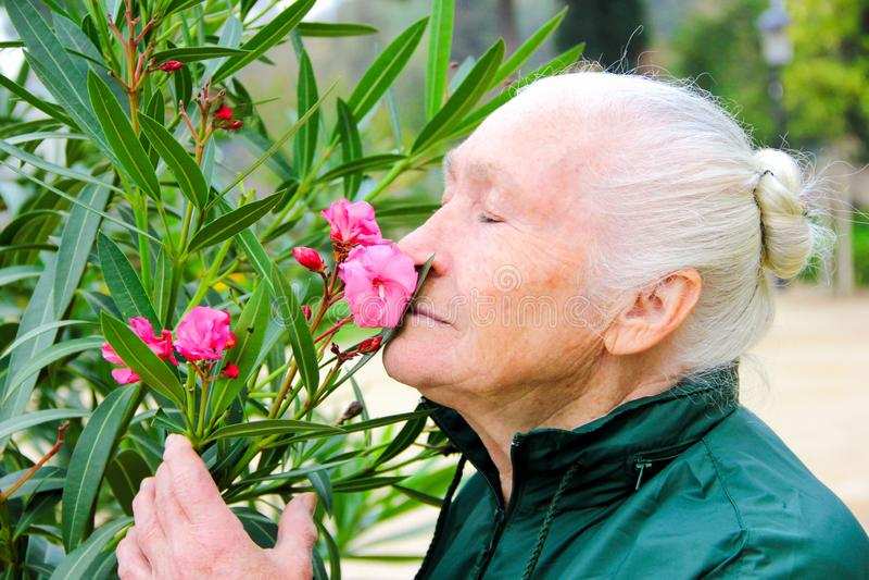 Äldre kvinna som luktar blommayttersidan under våren arkivfoto
