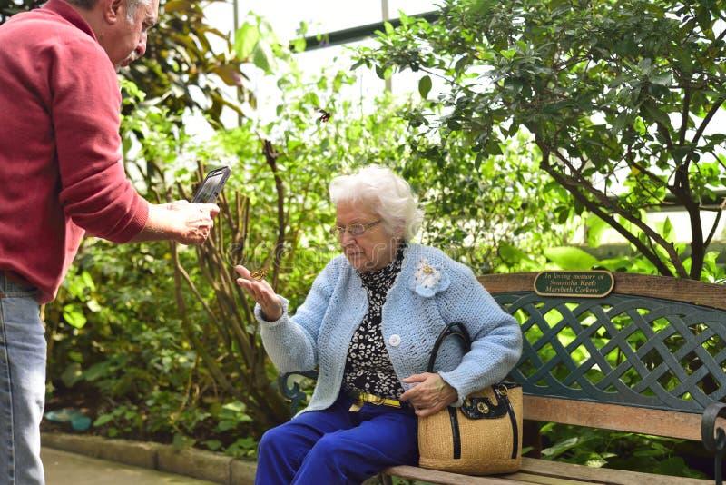 Äldre kvinna som rymmer en fjäril arkivfoton