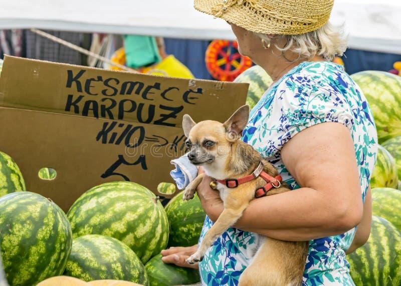 Äldre kvinna som rymmer en liten hund som köper vattenmelon på basaren royaltyfri fotografi