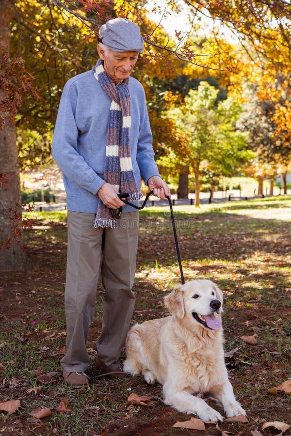 Äldre man som håller hans hund på en ledning royaltyfri fotografi