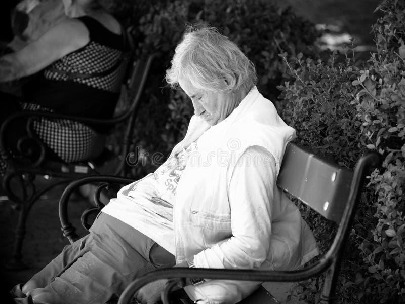 Äldre man som sover på en bänk i Sofia Downtown, Bulgarien fotografering för bildbyråer