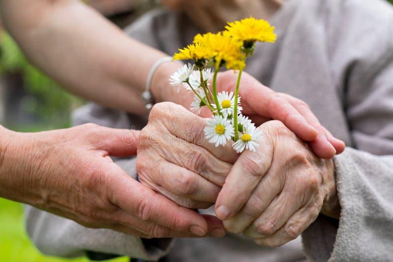 Äldre omsorg - händer, bukett arkivfoto