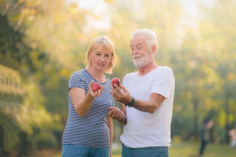 Äldre par som kopplar av i trädgård på solnedgången Förälskelse för begreppsparfläder royaltyfri foto