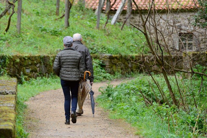 Äldre par som promenerar banan i, parkerar royaltyfria foton