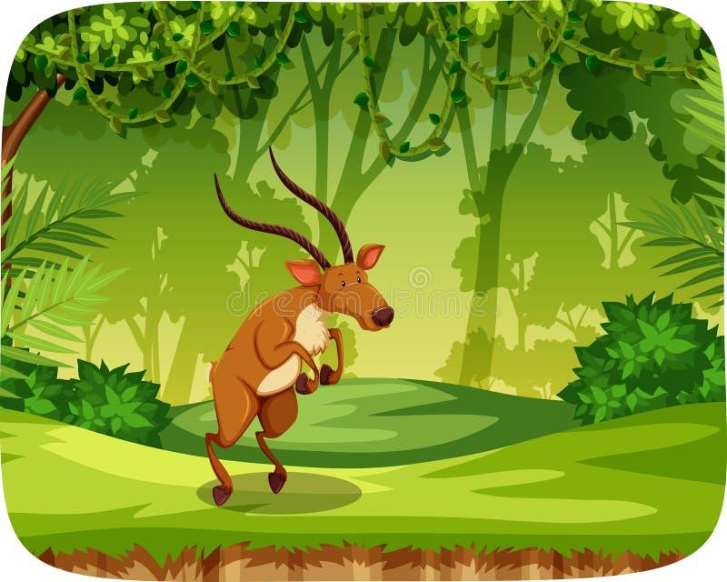 Älg i djungelplats vektor illustrationer