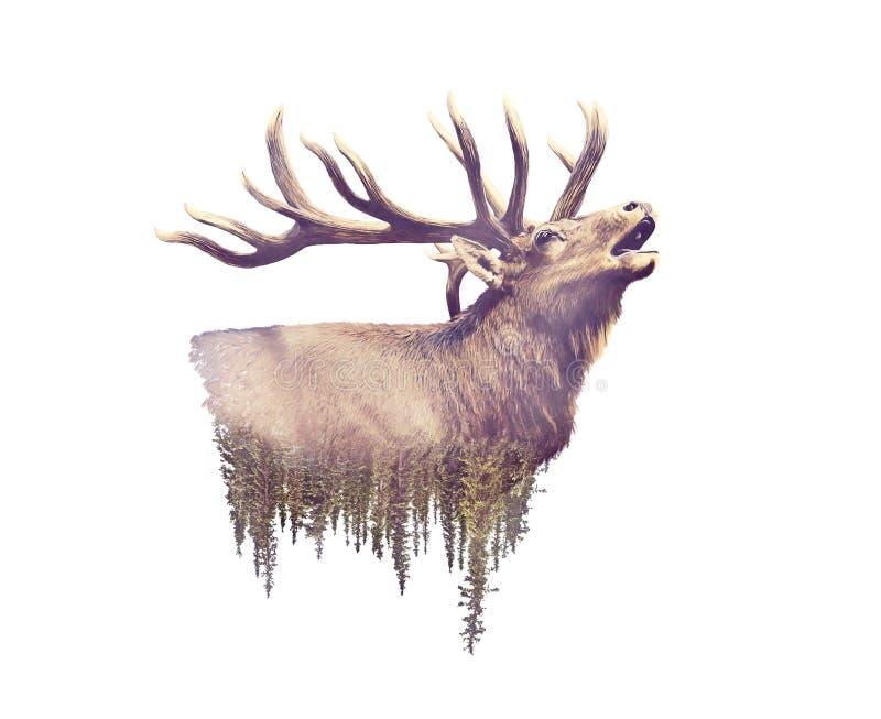 Älg- och Forest Watercolor Double Exposure effekt royaltyfri illustrationer