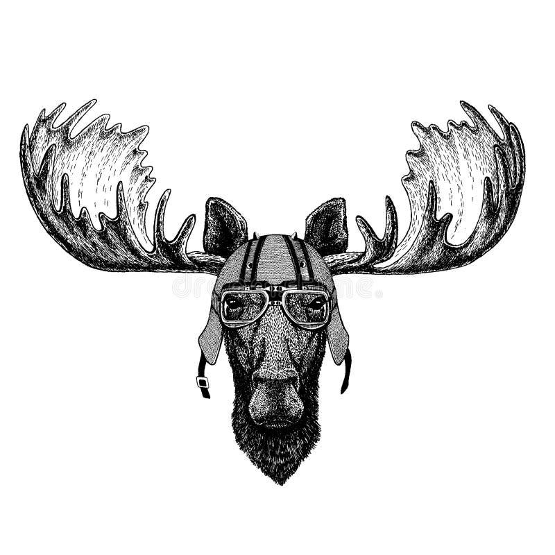 Älg älg som bär en motorcykel, aero hjälm Utdragen bild för hand för tatueringen, t-skjorta, emblem, emblem, logo, lapp royaltyfri illustrationer