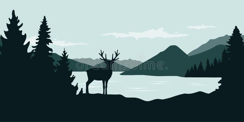 Älg vid landskapet för natur för djurliv för flodgräsplanskog royaltyfri illustrationer