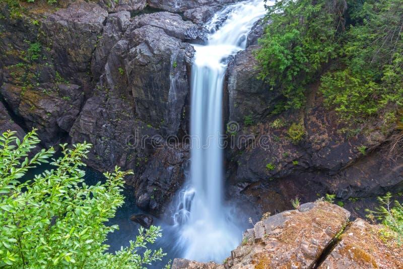 Älgen faller den sceniska Vancouver för rainforesten för frodig lövverk för vattenfallet ön F. KR. Kanada royaltyfri foto