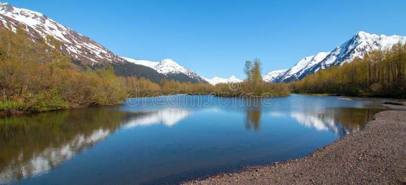 Älgen sänker våtmark och Portage liten vik i den Turnagain armen nära ankringen Alaska USA royaltyfri fotografi