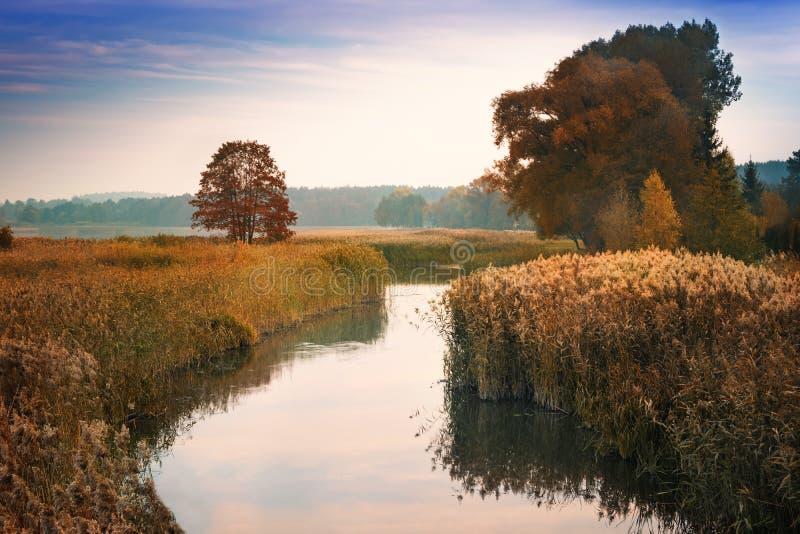 Älgflodbred flodmynning 2 arkivfoto