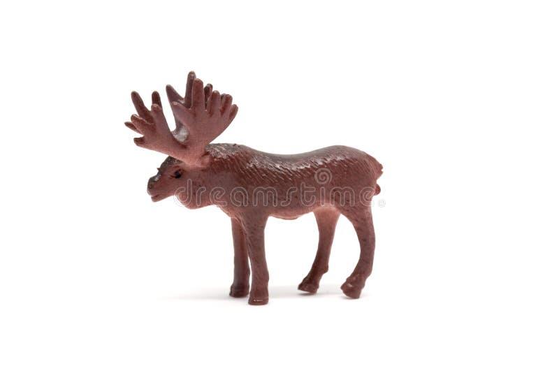 Älgmodell som isoleras på vit bakgrund, djur leksakerplast- royaltyfria foton