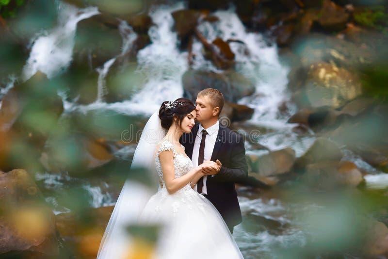Älska den unga parbruden med brudgummen nära en vattenfall i utomhus- skogförbindelsepar royaltyfri fotografi