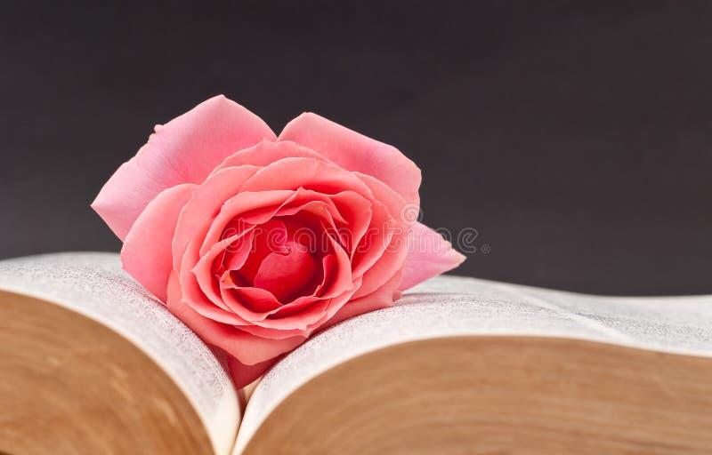 älska för bokmärke royaltyfria foton