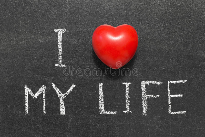 Älska mitt liv royaltyfri bild