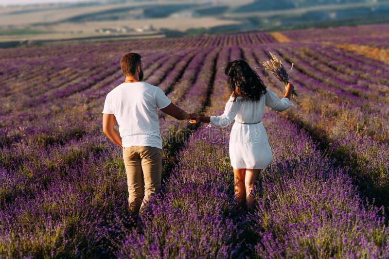 Älska par som rymmer händer på lavendelfält Lyckliga par på bakre sikt för blommafält l?pande kvinna f?r man f?rbunden solnedg?ng royaltyfri bild