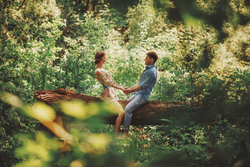 Älska parsammanträde på träd i sommar royaltyfria foton