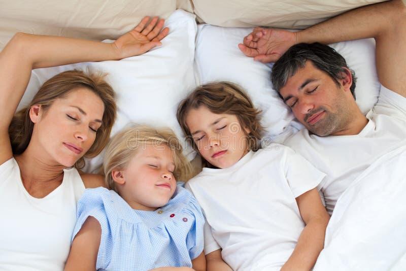 älska sova för familj tillsammans royaltyfria bilder