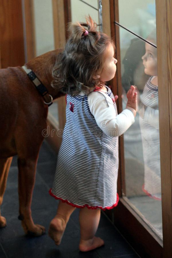 älsklings- litet barn för hund arkivbilder