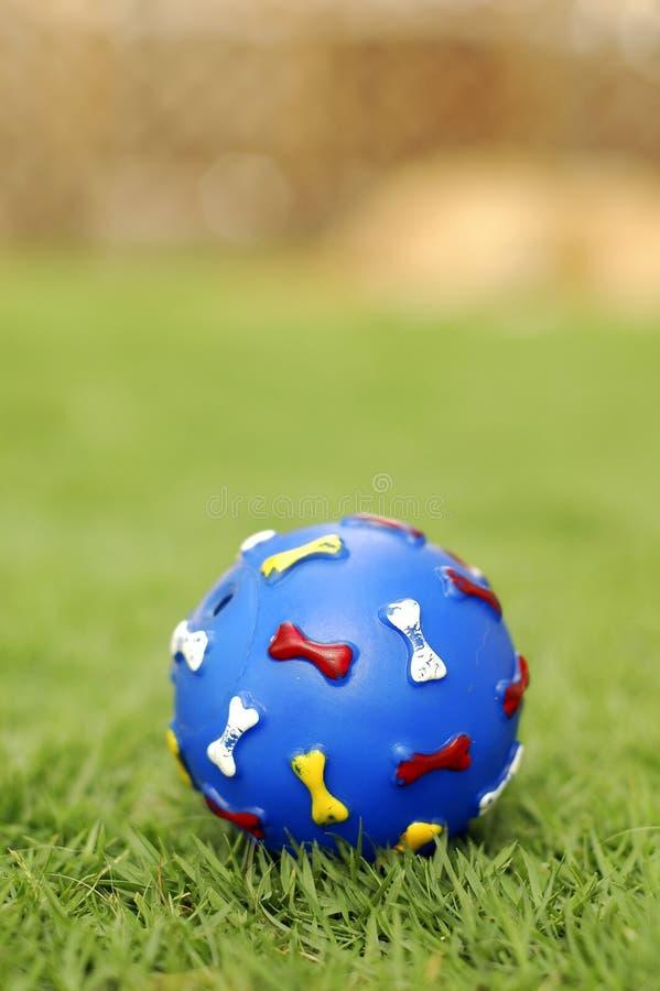 Download älsklings- toy för boll fotografering för bildbyråer. Bild av tiny - 2612143