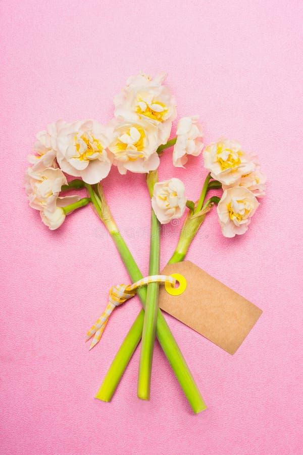 Älskvärd bukett av påskliljor med det tomma etikettkortet på rosa bakgrund, bästa sikt royaltyfri bild