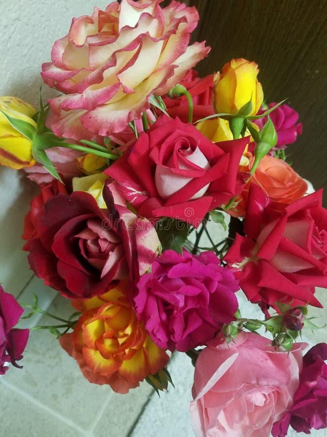 Älskvärd bukett av rosor royaltyfria bilder