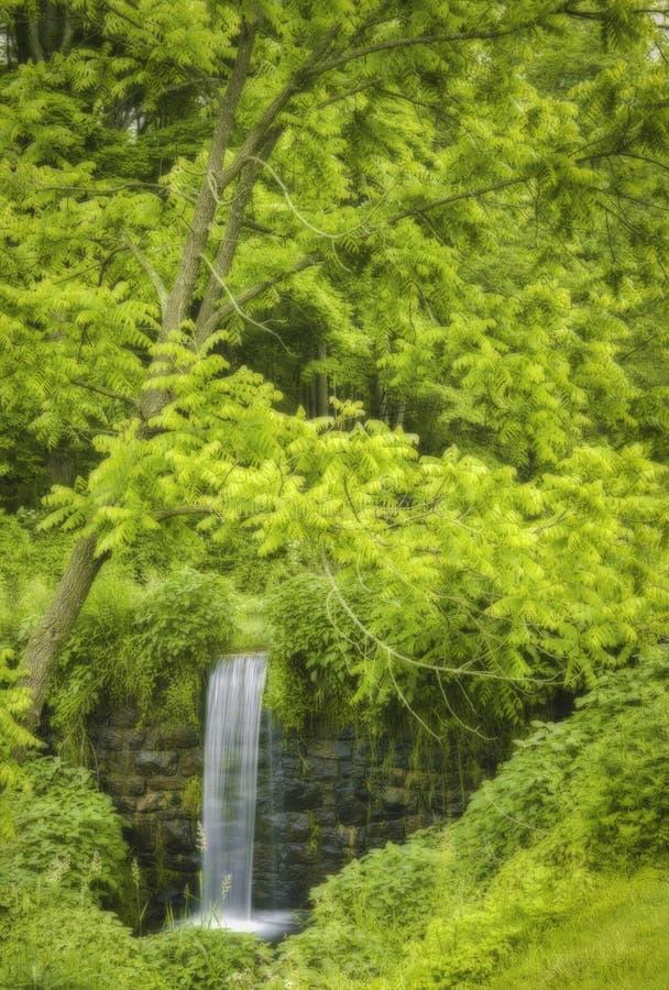 Älskvärd gömd vattenfall i nya Far Hills - ärmlös tröja royaltyfria bilder