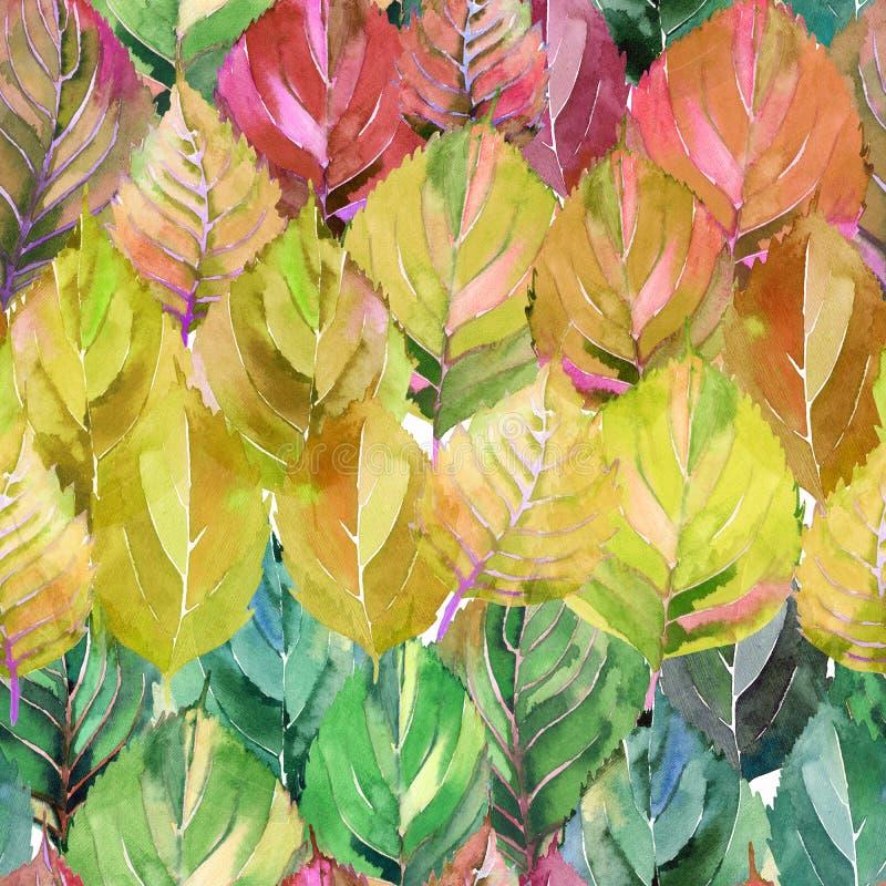 Älskvärd grupp av höstsidorna som regnbågen Grafisk ljus blom- växt- modell för sidor för orange guling för höst royaltyfri illustrationer