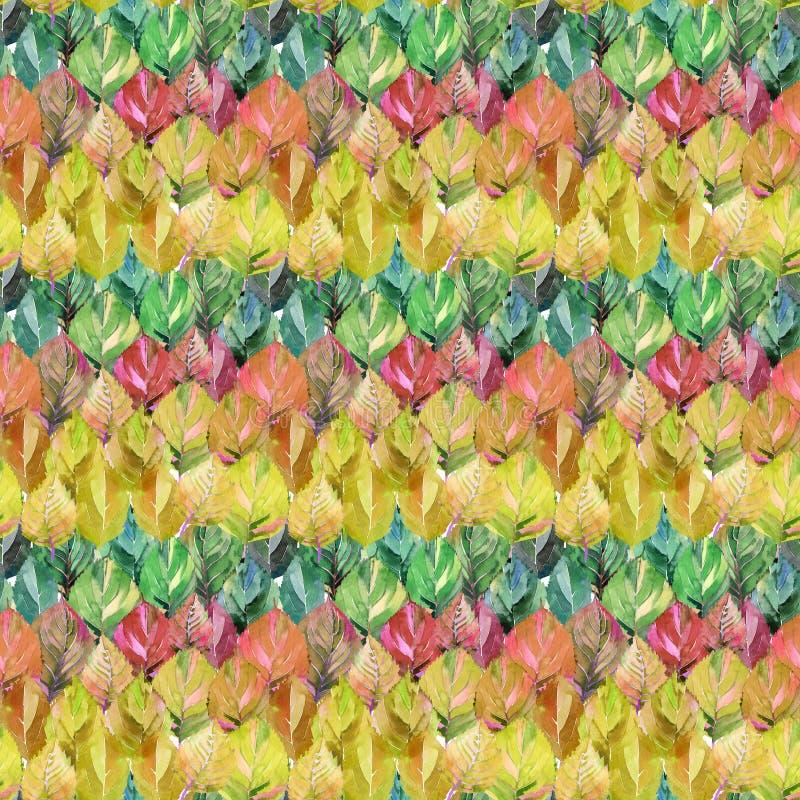 Älskvärd grupp av höstsidorna som regnbågen Grafiskt ljust f vektor illustrationer