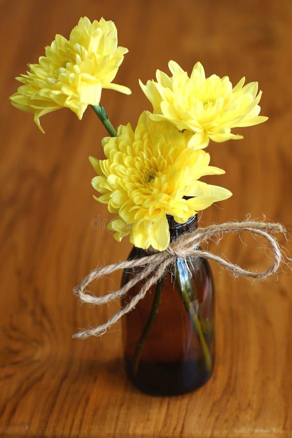Älskvärd gul blomningkrysantemum i vas på trätabellen med vit väggbakgrund, stillebenbegrepp arkivbild