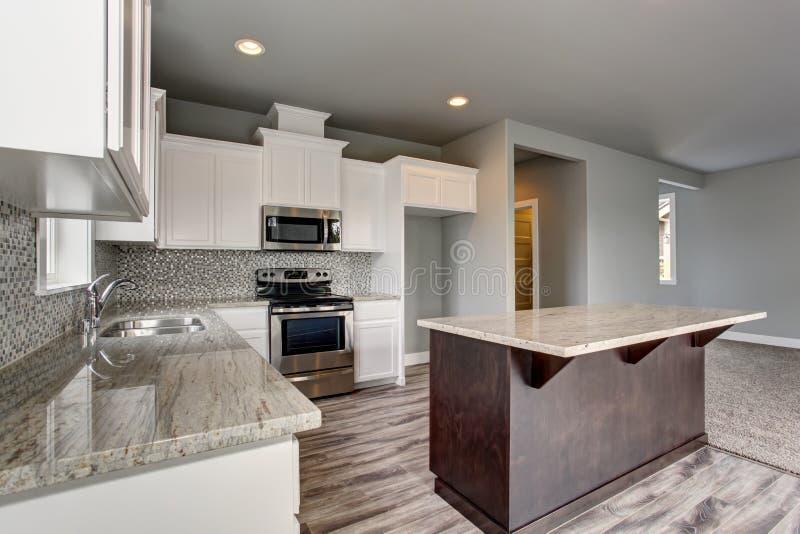Älskvärd kökruminre med den vit kabinetter, kökön och graniträknareblast royaltyfri bild