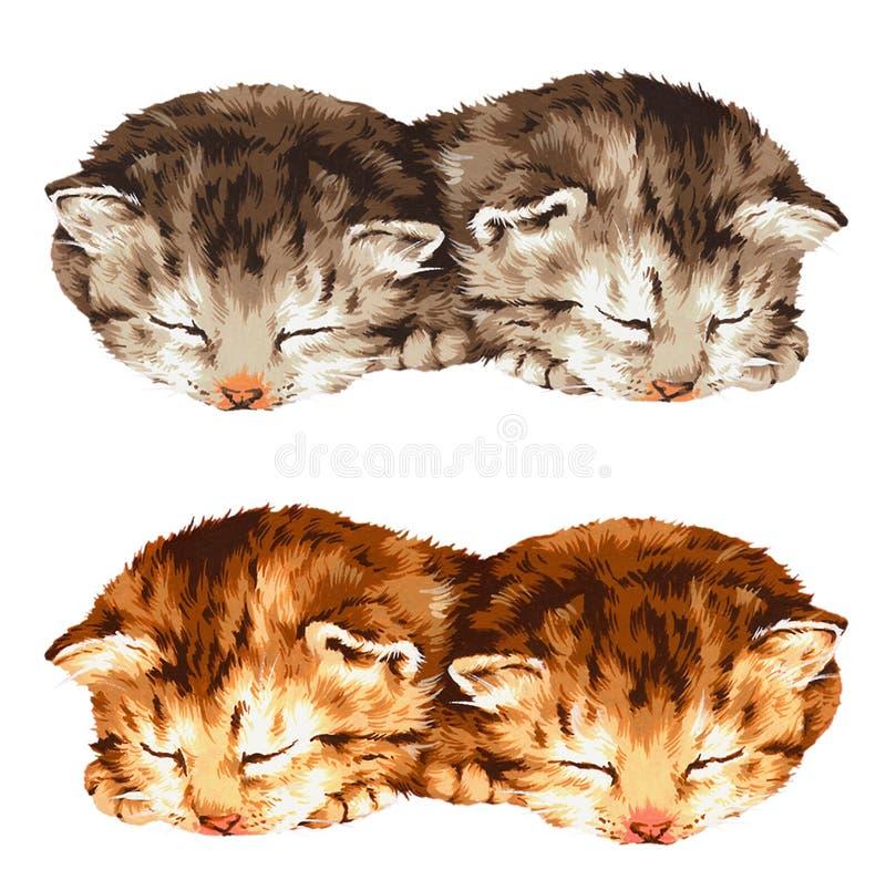 älskvärd katt vektor illustrationer