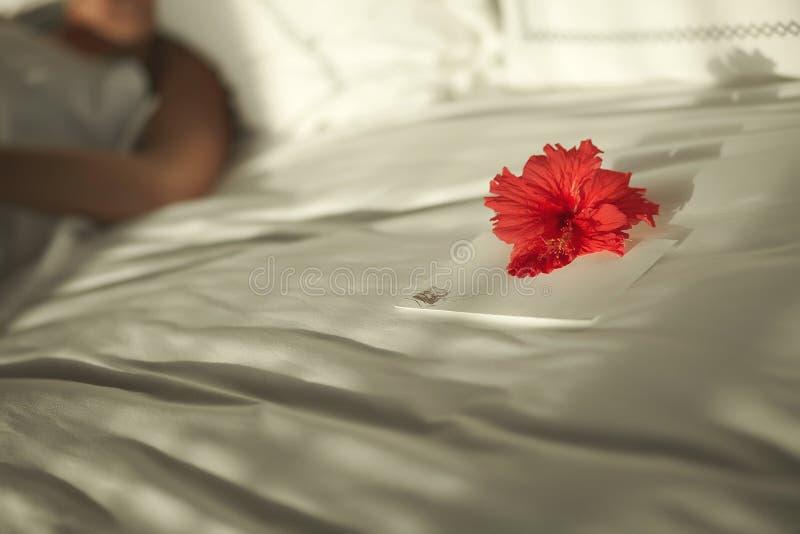 Älskvärd valentinbokstav på säng med blomman royaltyfri fotografi