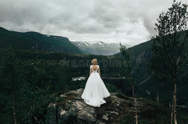 Älskvärda brölloppar som kramar slappt Härlig berglandsca arkivbild