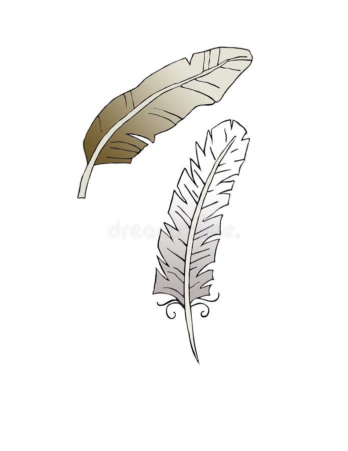 2 älskvärda detaljerade teckningar av fjädrar royaltyfria foton