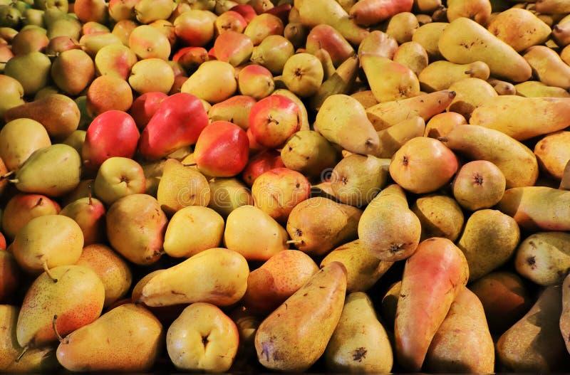 Älskvärda mogna päron på en toppen marknad i George South Africa Ordna till för marknaden Utmärkt kvalitets- och smakligt De visa royaltyfria foton