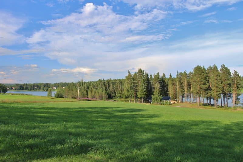 Älskvärt grönt sommarlandskap i nordliga Sverige royaltyfria bilder