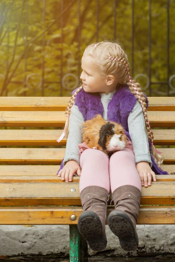 Älskvärt liten flickasammanträde på bänk med hennes cavy arkivbilder