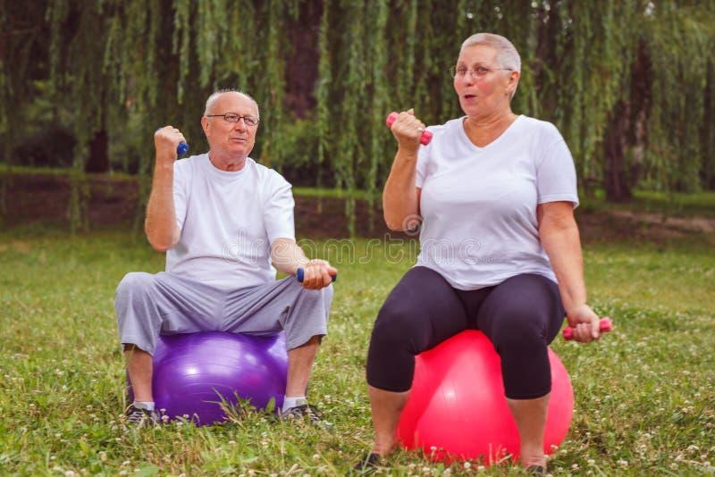Ältere Übung - älteres Paar, das Dummköpfe beim Sitzen auf Übungsball im Park hält lizenzfreies stockfoto