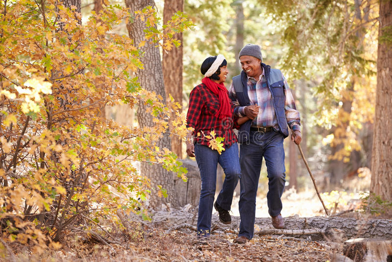 Ältere Afroamerikaner-Paare, die durch Fall-Waldland gehen lizenzfreie stockbilder