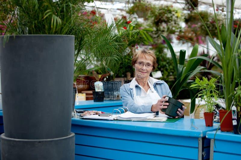 Ältere Arbeitskraft in der Garten-Mitte stockfoto