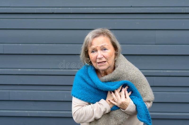 Ältere Dame, die ihren Kasten in den Schmerz erfasst lizenzfreie stockbilder