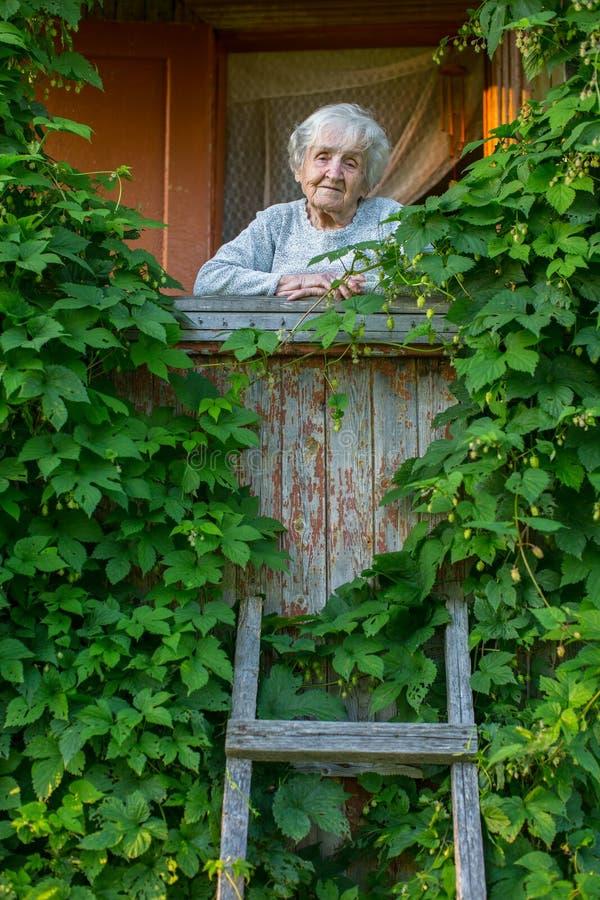 Ältere einzige Frau auf dem Portal, bedeckt mit dem Grün des ländlichen Hauses stockfotos