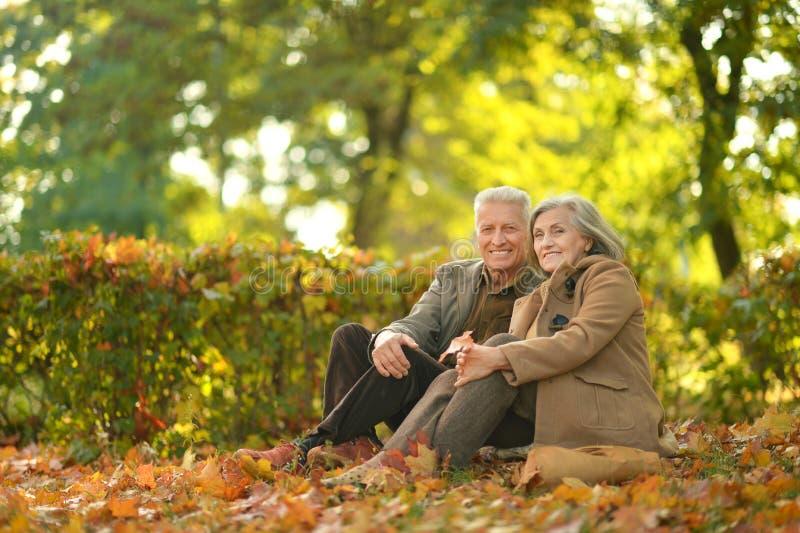 Ältere entspannende Paare stockbild